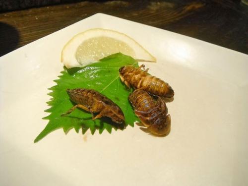อาหารญี่ปุ่นแปลก_4_61