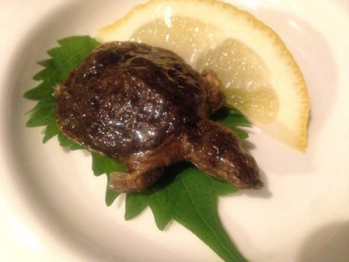 อาหารญี่ปุ่นแปลก_9_8